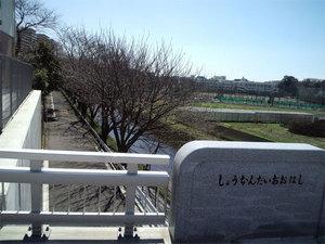 PAP_0945.jpg