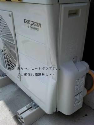 yokosukashi-ikegami-shikaiin-ziko.jpg