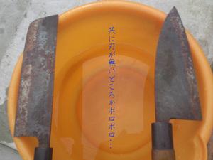 hayamamachi-isshiki-chuumonjyuutaku-shuzai-o.jpg