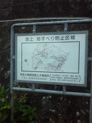 yokosukashi-ikegami-tochisagashi3.jpg