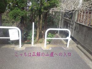 hazakura-zushi-yamamichi7.jpg