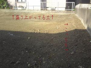 kamakura-zushi-hayama-yokohama-tochisagashi4.jpg