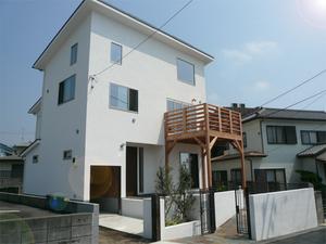 miurashi-minamishitaura-Miura-Sea-Life!!-ohikiwatashi.jpg