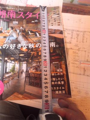 hayama-horiuchi-zousaku-hondana-s-basho2.jpg