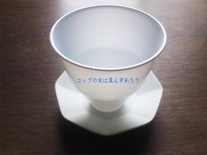 iraira-max-shoukougun.jpg