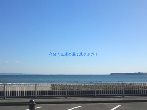 miurashi-koajiro-s-ohikiwatashi5.jpg