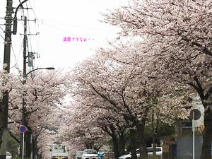 iraira-max-shoukougun5.jpg