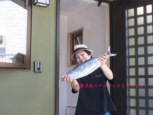 miurashi-misaki-koajiro-k-ohikiwatashi3.jpg
