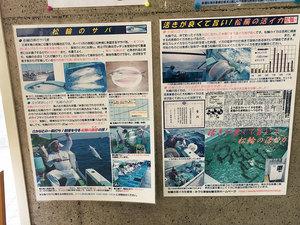 miurashi-matuwa-saba-matuwa2.jpg