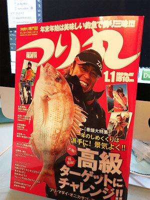 sagamiwan-thigasakioki-birutsuri5.jpg