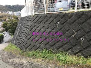 hayamamachi-isshiki-s-shikichi-chousa2.jpg
