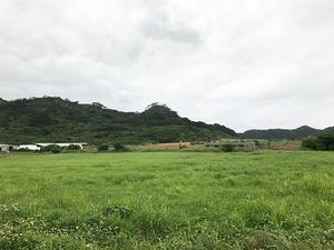 hayama-shigaika-chousei-jyuuyoujikou-setsumeisho-kenchiku-huka.jpg