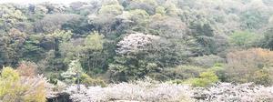 yokosuka-yama-keshiki-heigai.jpg